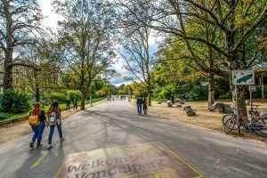 פארק וונדל אמסטרדם 2021 - כל מה שצריך לדעת!