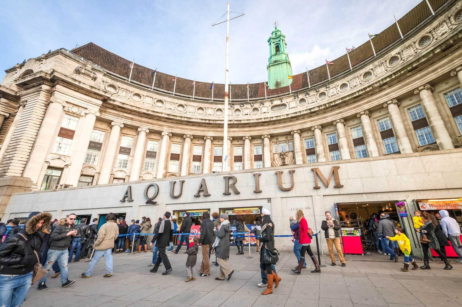 האקווריום של לונדון (Sea Life) - כרטיסים, הנחות וכל הפרטים!