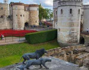 כרטיסים למצודת לונדון